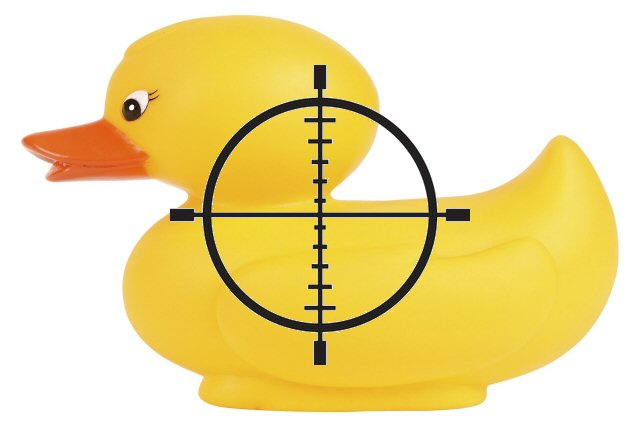 targeted duck